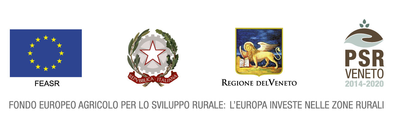 Loghi Regione Veneto